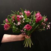 Pink tulips with small flowers