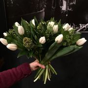 White tulips with skimmia and greens