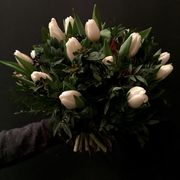 White tulips with greens