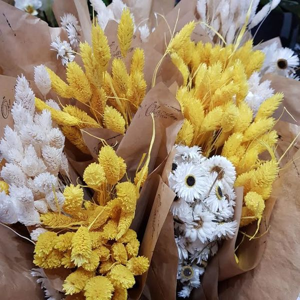 Dried flowers/ White
