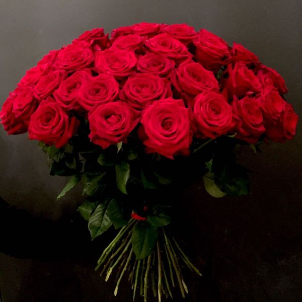 Long red roses